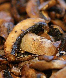 magic mushrooms recipe