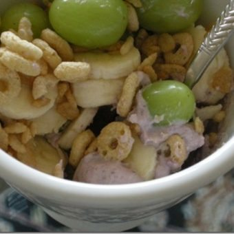 Vegan Greek Yogurt: a special guest'stake