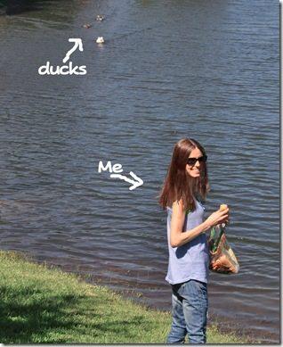 ducksme.jpg