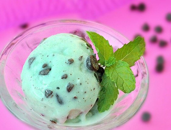 healthy mint chocolate chip ice cream