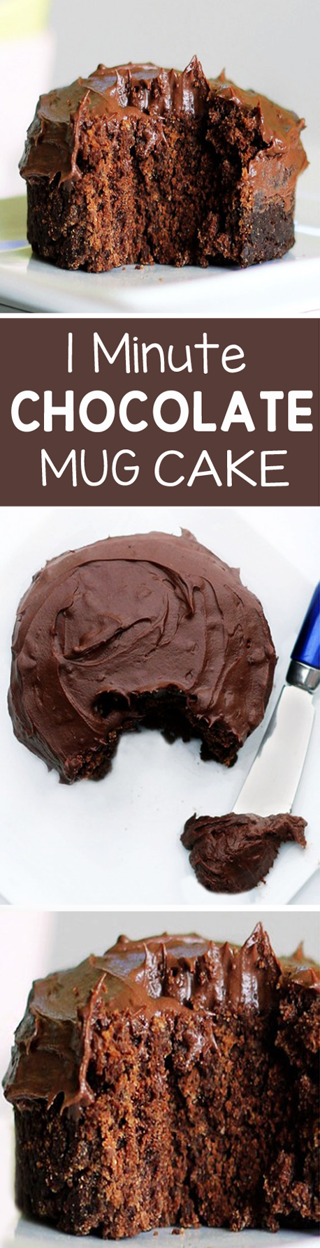 1 Minute Chocolate Cake In A Mug!