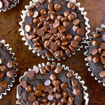 Fudgy Chocolate Blender Muffins