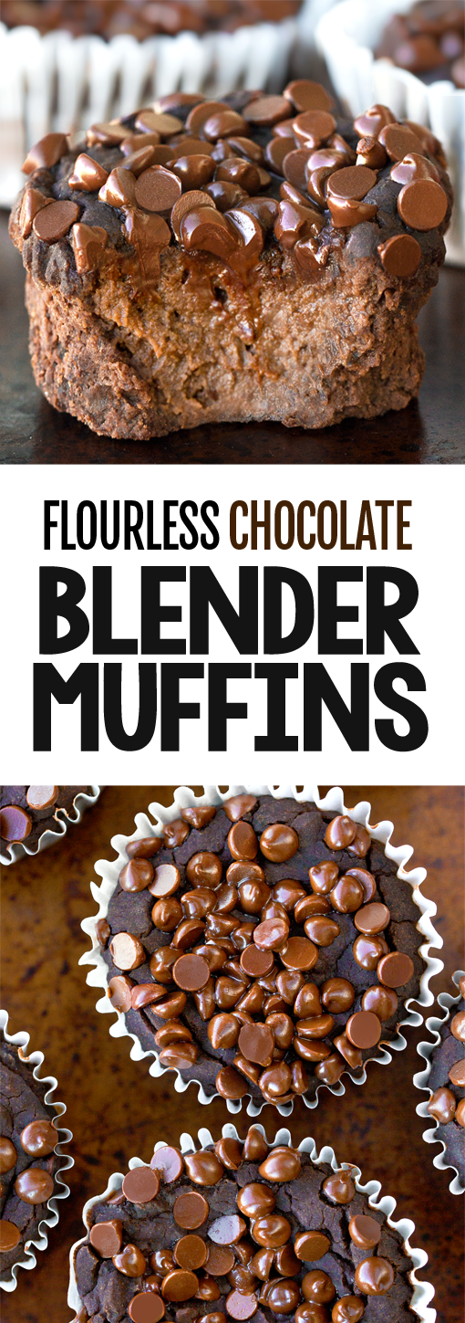 Secretly Healthy Flourless Chocolate Blender Muffins