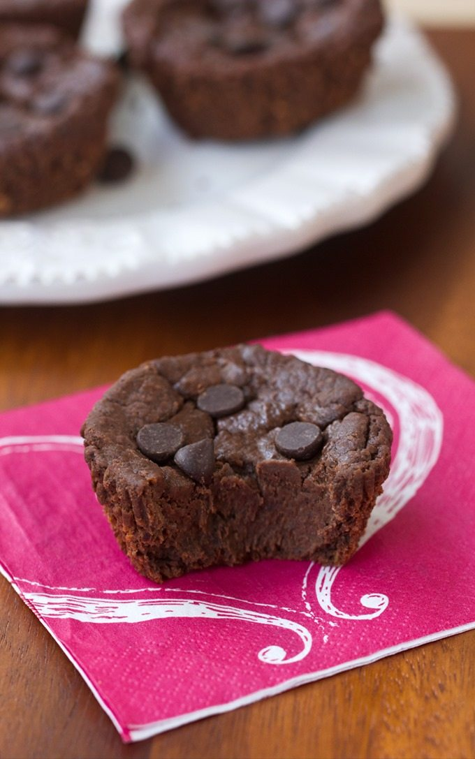 Flourless Chocolate Blender Muffins. Super healthy chocolate muffin recipe, with NO flour, NO oil, and NO refined sugar! @choccoveredkt http://chocolatecoveredkatie.com