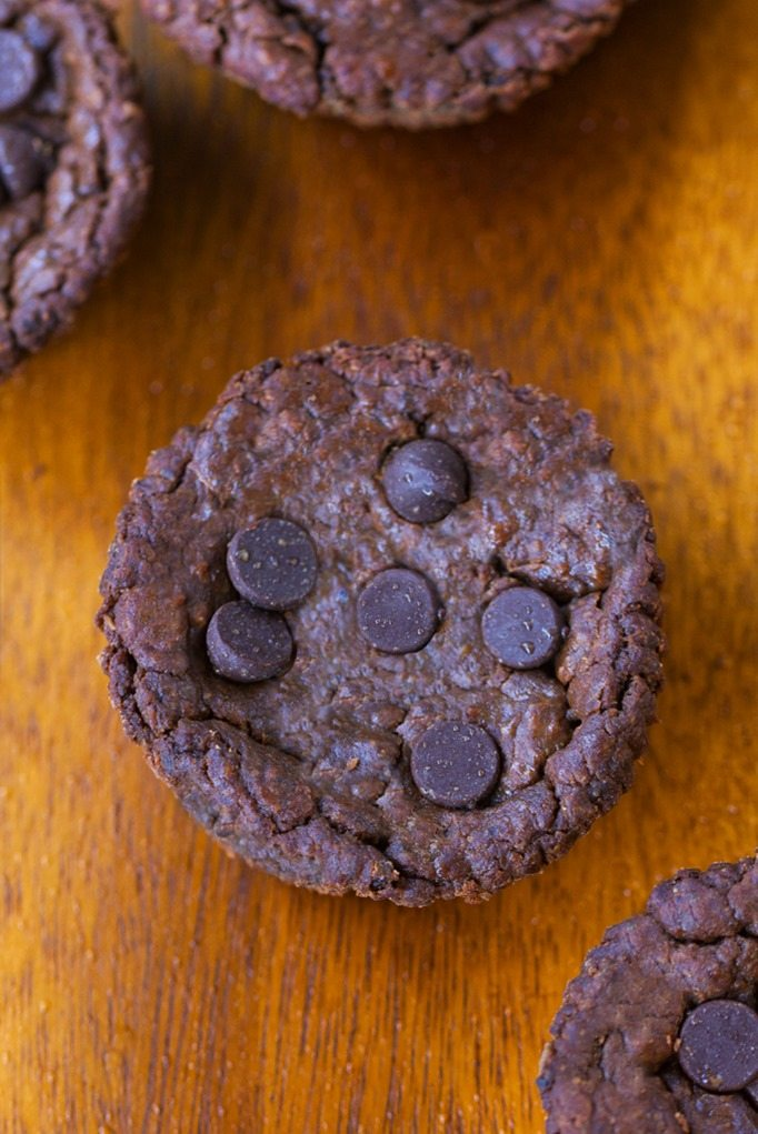 Flourless Chocolate Muffins. Super healthy chocolate muffin recipe, with NO flour, NO oil, and NO refined sugar! @choccoveredkt http://chocolatecoveredkatie.com