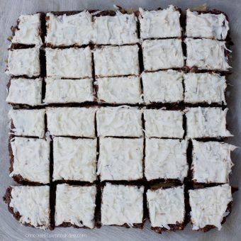 Coconut Chocolate Chip Brownie Bars