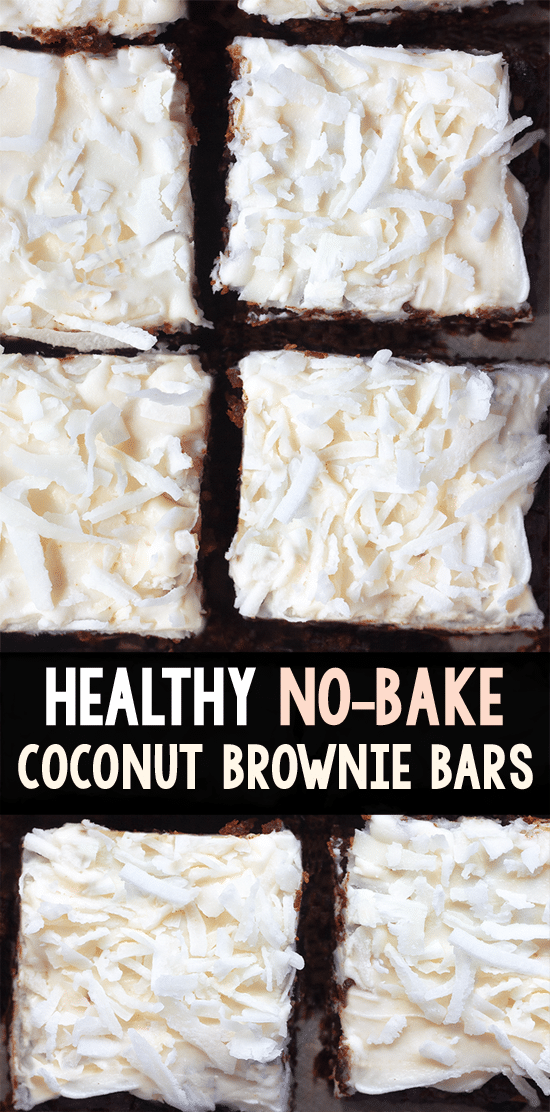 Coconut Chocolate Chip Brownie Healthy Snack Bars