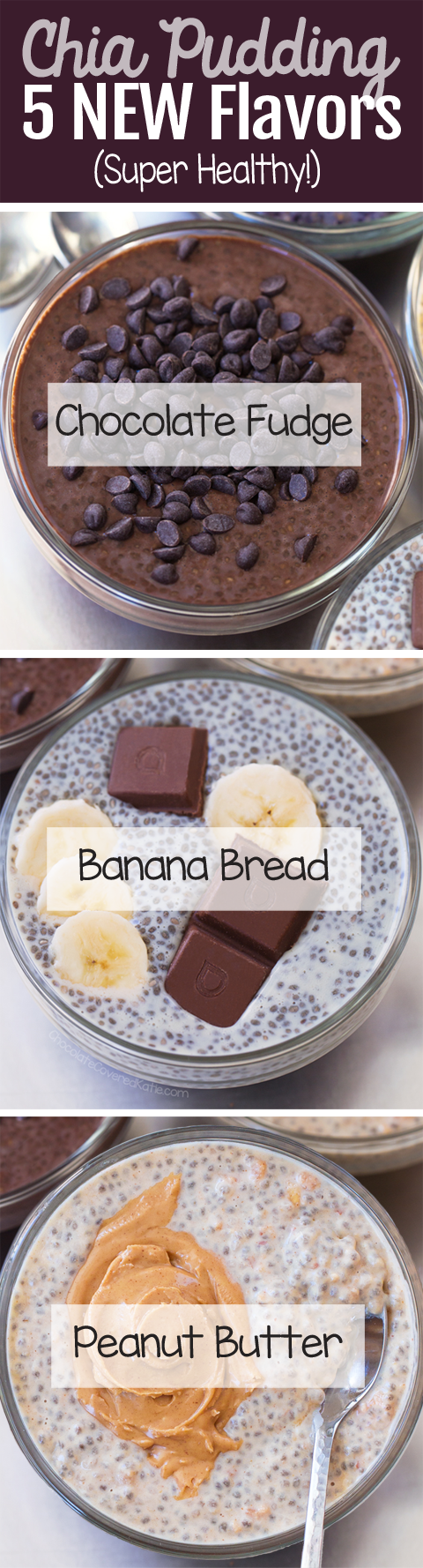 Chia Pudding Recipes (Vegan, Keto, Paleo, Gluten Free)