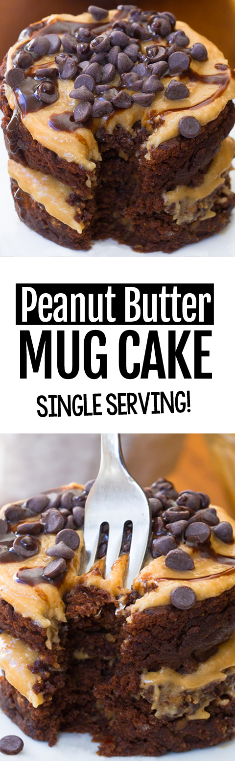 Single Serving Chocolate Peanut Butter Mug Cake