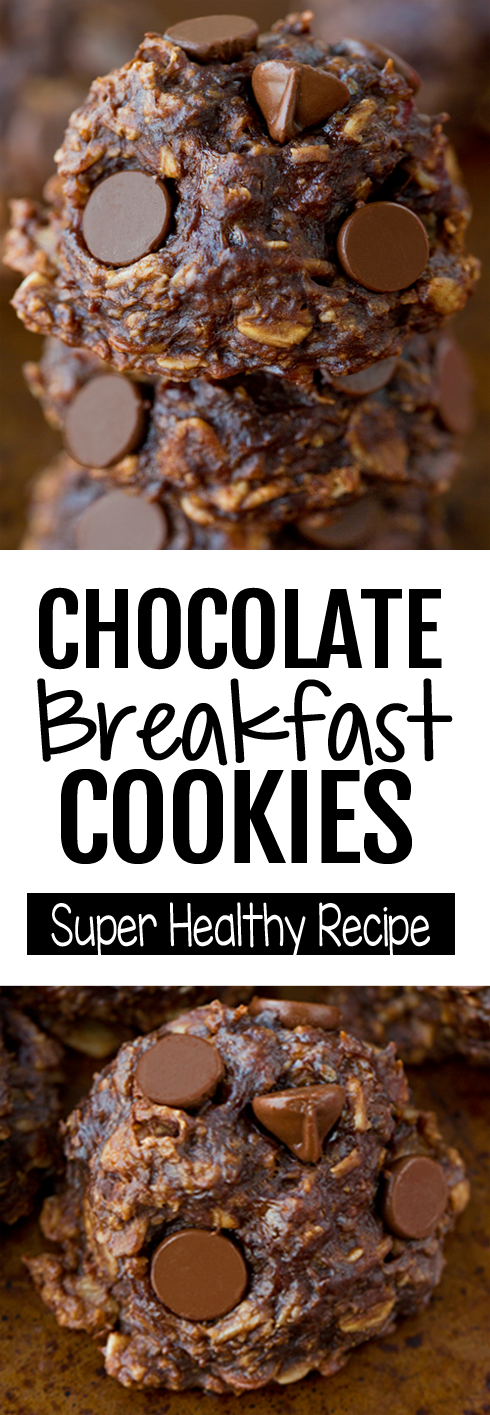 No Bake Healthy Chocolate Breakfast Cookies