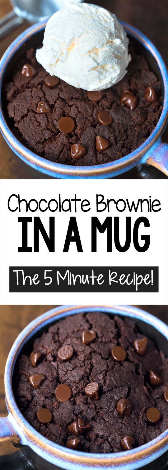 5 Minute Chocolate Brownie Mug Cake Recipe