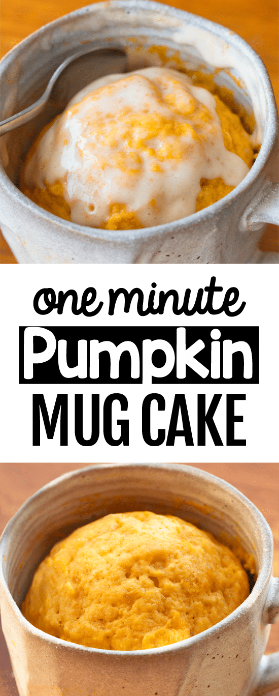 One Minute Vegan Pumpkin Mug Cake Recipe