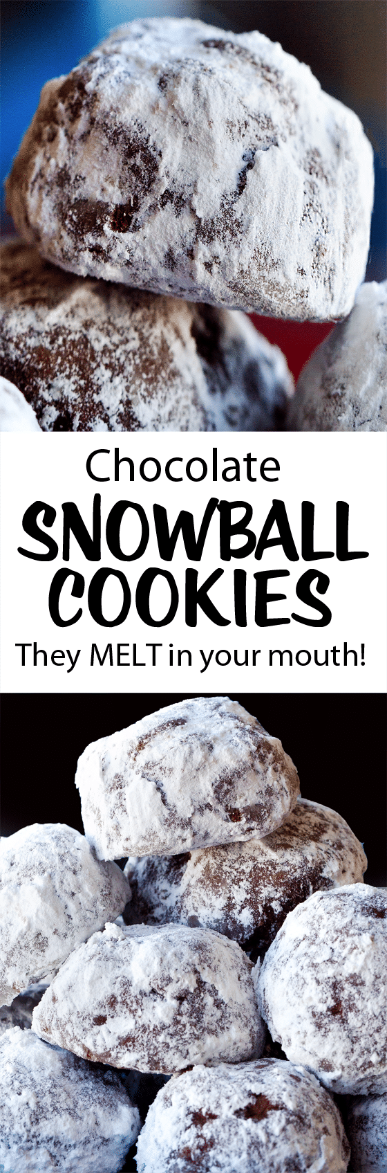 The Best Chocolate Snowball Cookie Holiday Recipe