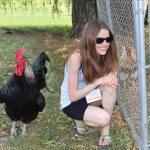 Catskill-Animal-Sanctuary