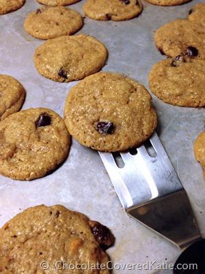 fitnessista cookies
