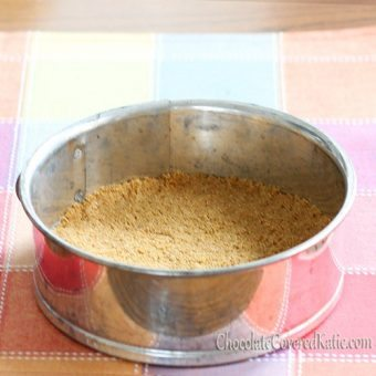 Healthy Graham Cracker Pie Crust