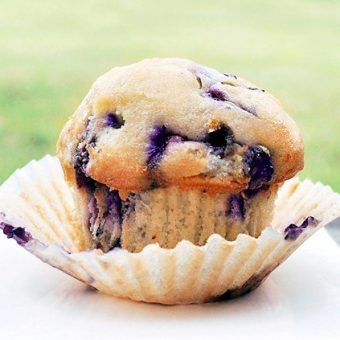 Single Serving Blueberry Muffin
